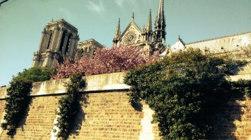 5 Big Paris Tips (and many small ones)