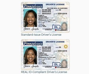 Real ID driver's license vs. Standard Issue driver's license for Pennsylavnia, courtesy of the Commonwealth of Pennsylvania