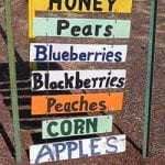 Oregon vacations farm stand