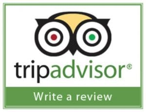 customer review excellence