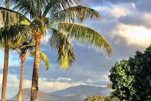 Hawaii plans reopening