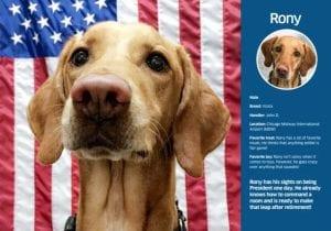 TSA Dog Calendar